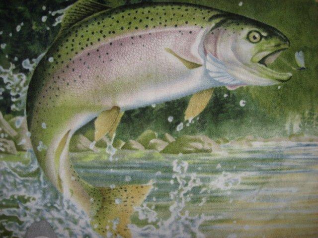 Image 1 of Rainbow Trout Fish Artist Hautman LIGHTWIGHT warm Fleece Blanket  gift  Dad