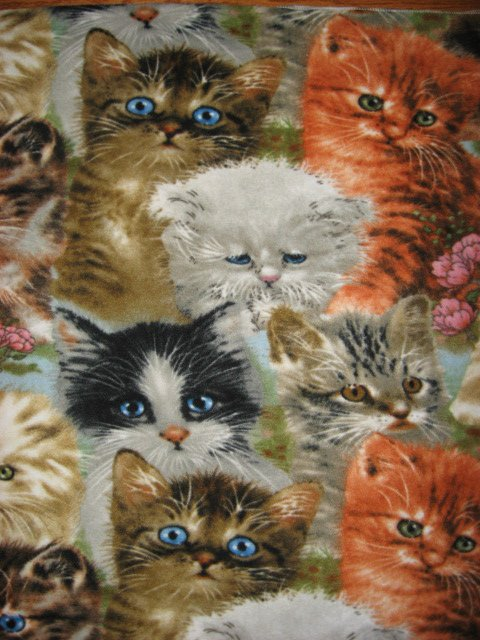 Cat pet crate fleec blanket  adorable  by Artist Giordano 38 licensed fleece
