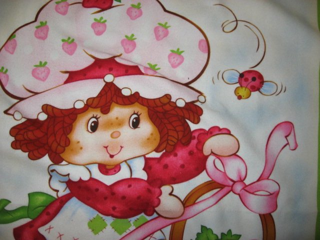 Image 3 of Strawberry Shortcakechild baby  Flannel blanket or Wall panel finished edge