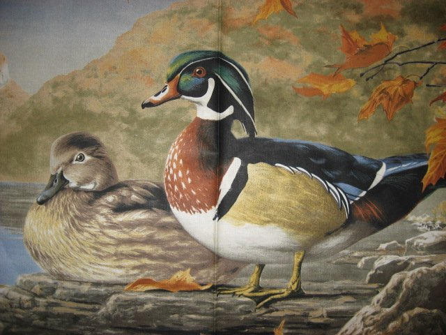 wood duck Mallard Duck birds river scenic sewing cotton Fabric wall panel /