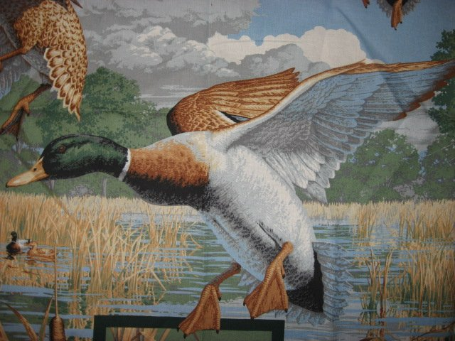 Image 1 of Mallard Ducks birds and cattails in a marsh sewing cotton Fabric wall panel //