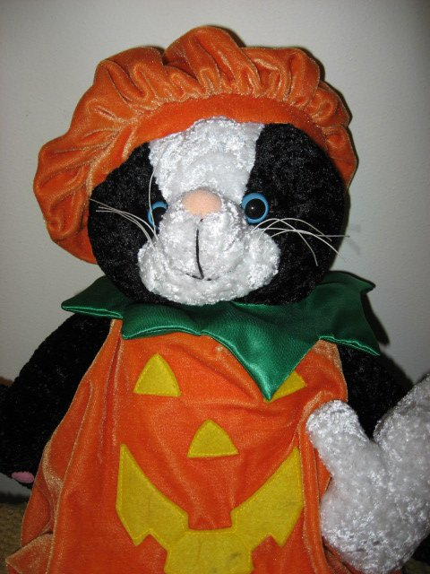 Image 2 of Halloween doll black cat and ghost with pumpkin costume Ages 3 and up