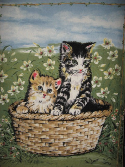 Image 0 of Cats kittens in basket Anti pill Fleece Blanket