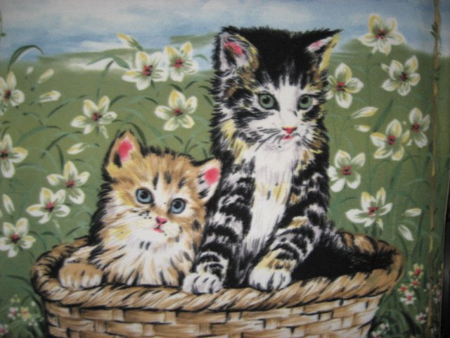 Image 1 of Cats kittens in basket Anti pill Fleece Blanket