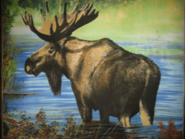 Image 1 of Moose fleece blanket with finished edges