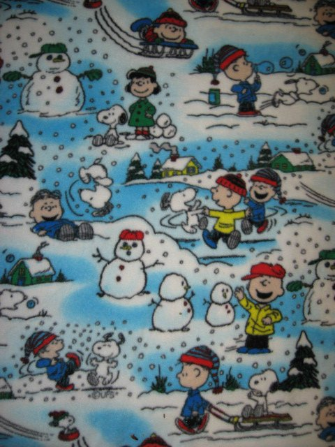 Image 0 of Peanuts Snoopy Charlie Brown 36