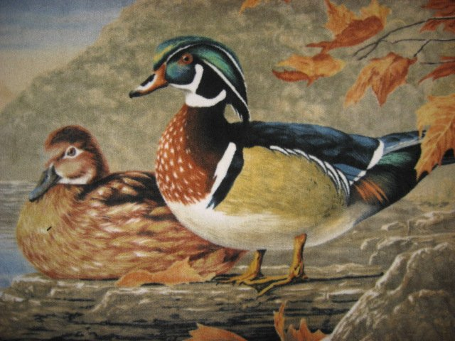 Image 1 of wood ducks on a lake  lightweight fleece  bed blanket