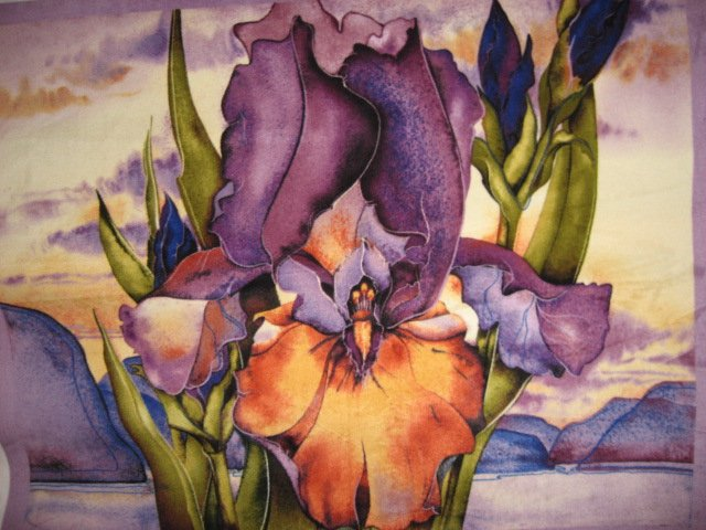 Iris desert flower Southwest antipill fleece blanket with finished edges