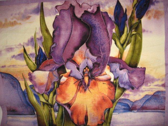 Iris desert flower Southwest antipill fleece blanket with finished edges