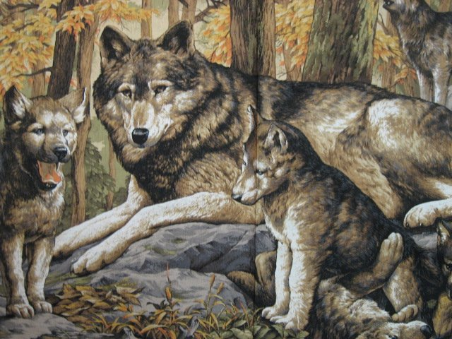Image 1 of Wolf Family with Cubs in Forest scene fabric Wall Panel to sew  //