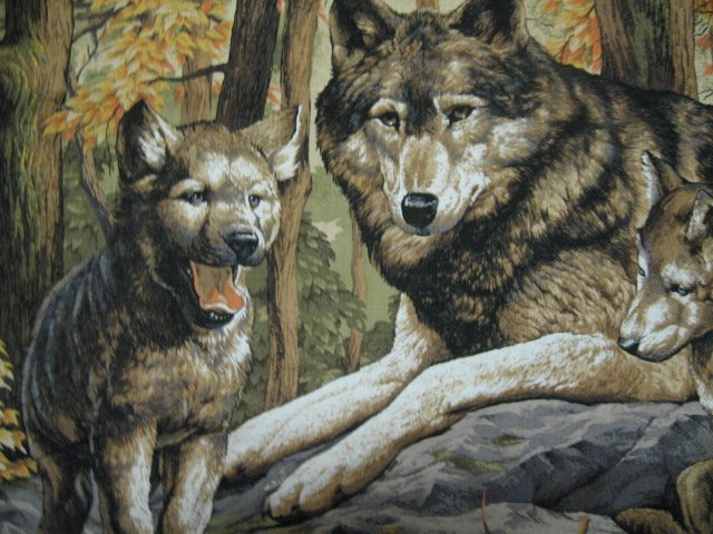 Image 2 of Wolf Family with Cubs in Forest scene fabric Wall Panel to sew  //