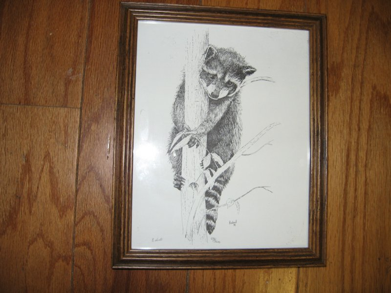 Raccoon animal picture tree black white framed 9 X11 Bicknell signed numbered