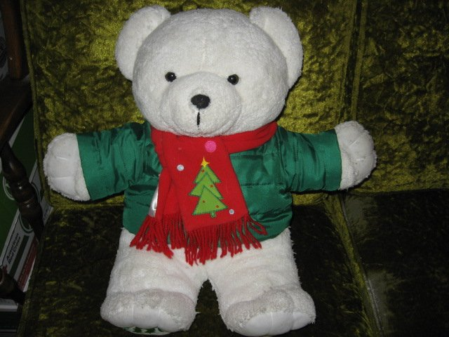 Image 0 of DanDee collectible Xmas Teddy Bear jacket and scarf 2016  19