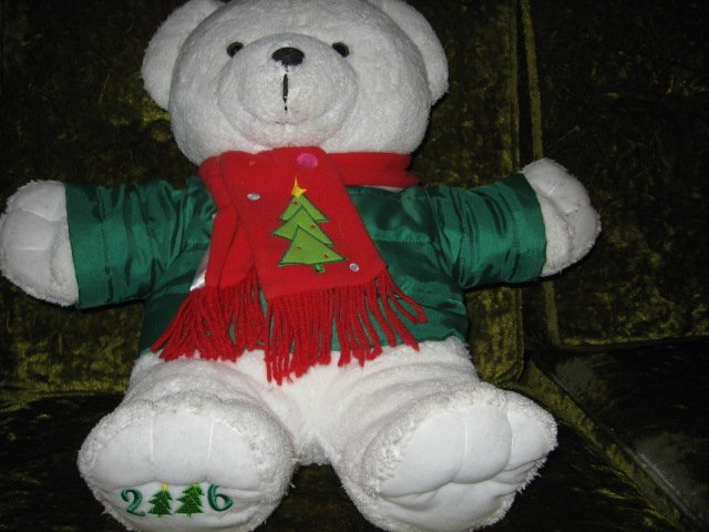 Image 1 of DanDee collectible Xmas Teddy Bear jacket and scarf 2016  19