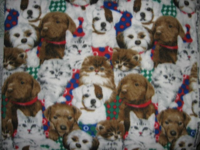 cat dog  breed colorful collars plush polar fleece throw Blanket