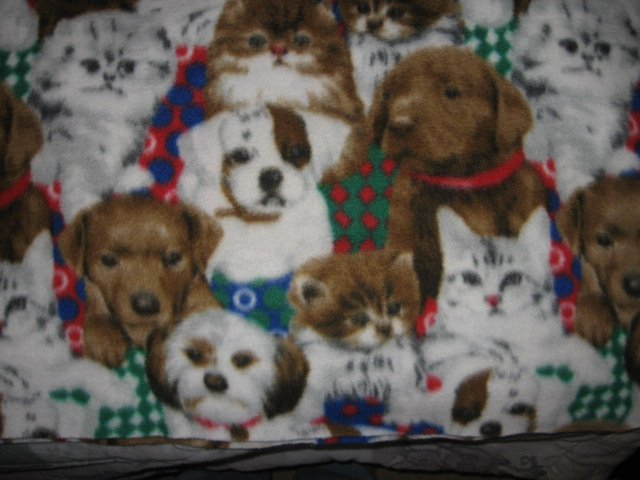 Image 2 of cat dog  breed colorful collars plush polar fleece throw Blanket