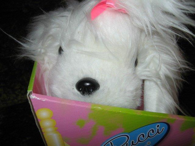 Image 2 of Pucci Pup Maltese Princess Soft Toy Dog Doll 2013 NIB