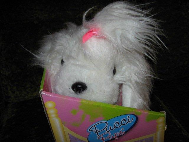 Image 4 of Pucci Pup Maltese Princess Soft Toy Dog Doll 2013 NIB