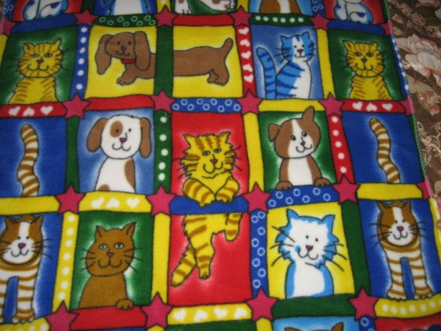 cat dog squares primary colors whimsical fleece baby blanket
