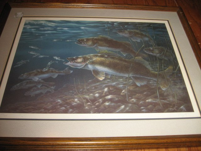 Walleye fish scene no glare glass framed reproduction   artist Doughty