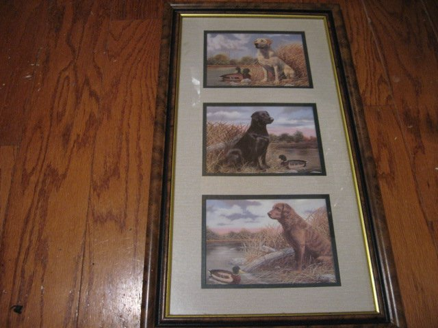 Labrador Dogs Three  framed