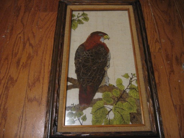 Peregrine Falcon bird feathers leafs rustic frame