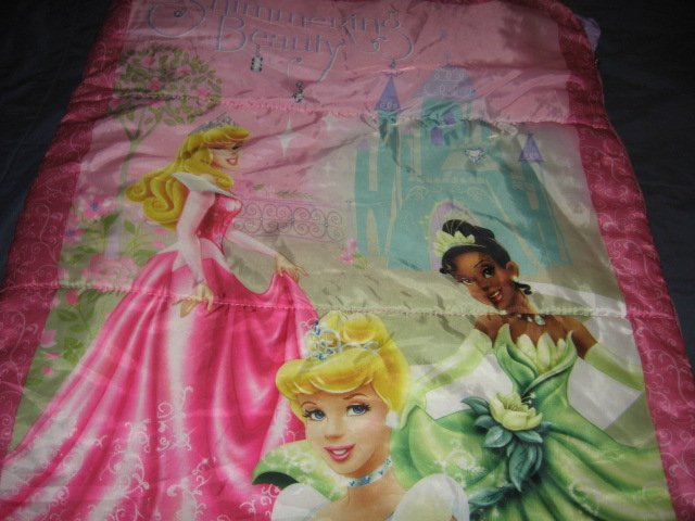 Image 0 of Disney sleeping beauty and friends comforter or sleeping bag 52X55 inches/