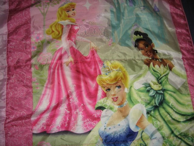Image 1 of Disney sleeping beauty and friends comforter or sleeping bag 52X55 inches/
