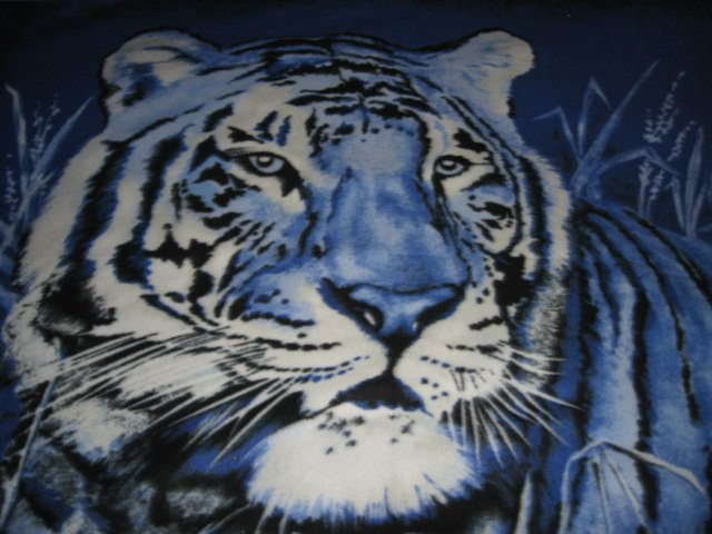 Tiger exquisite blue  bed size Fleece blanket Panel very rare
