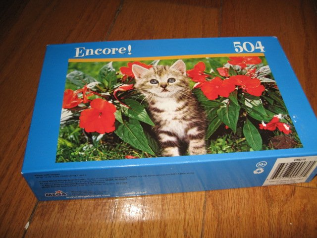 Image 0 of Kitten stripes 504 piece puzzle 10 X 18 inches