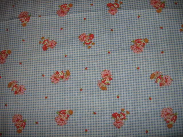 Image 0 of Strawberry Shortcake checked background cotton fabric 19 inch by 22 inch