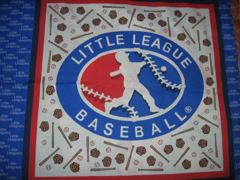 Little League characters baseball bats gloves set of two pillow panels