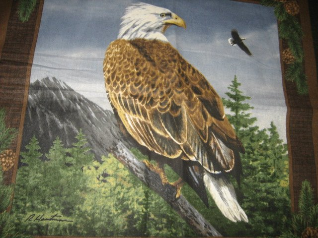 Eagle in habitat  fabric pillow panels set of two