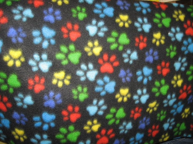 paw prints colorful on small black fleece for puppy