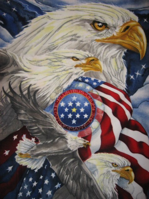 Eagles and American Flag Anti pill Fleece blanket