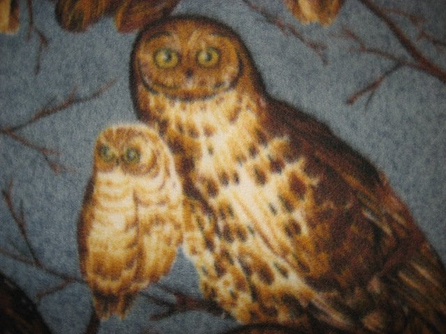 Image 1 of Owls on rare gray Fleece Blanket 45