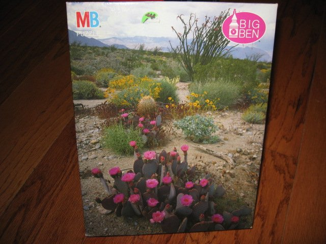 Anza Borrego Desert CA Cactus flowers 1000 pieces jigsaw Puzzle NEW