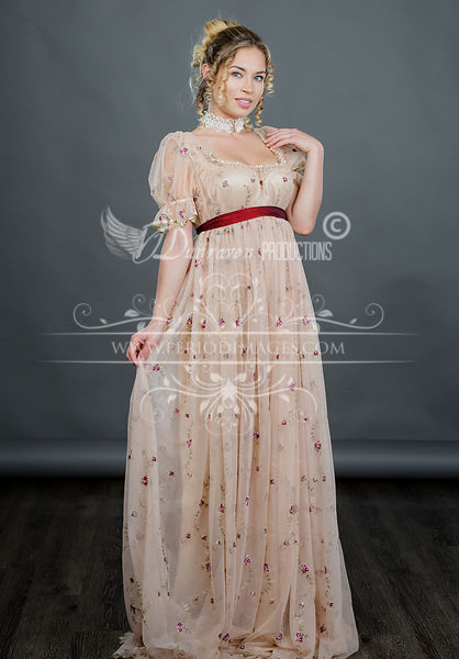 Image 1 of Regency Embroidered Taupe Gown