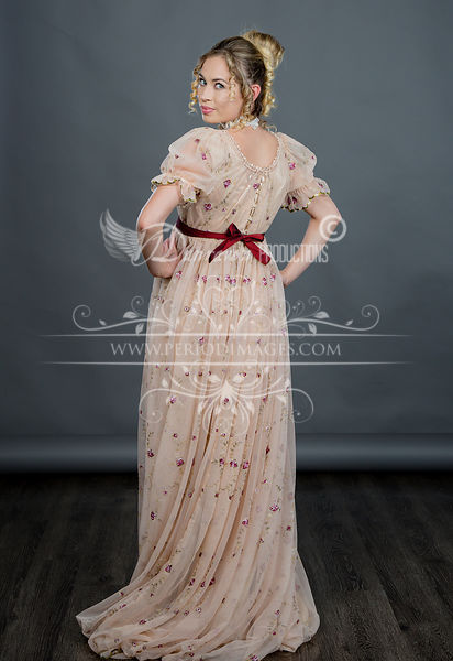 Image 2 of Regency Embroidered Taupe Gown