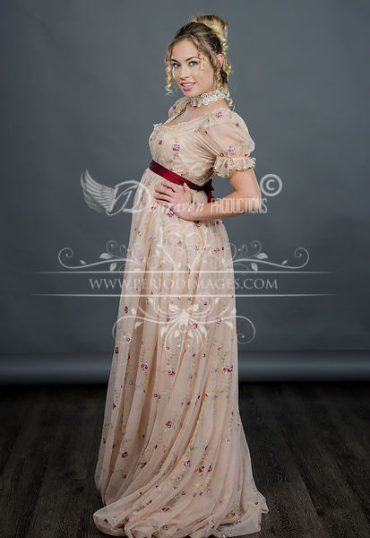 Image 3 of Regency Embroidered Taupe Gown