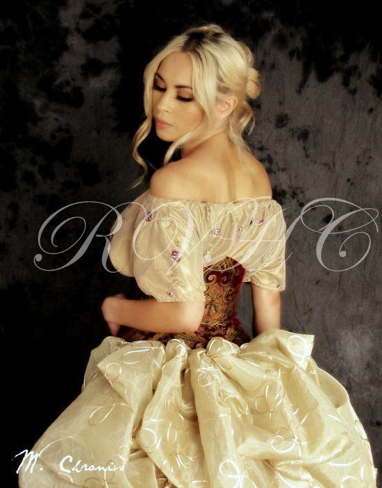 Image 3 of Grand Victorian Ball Gown