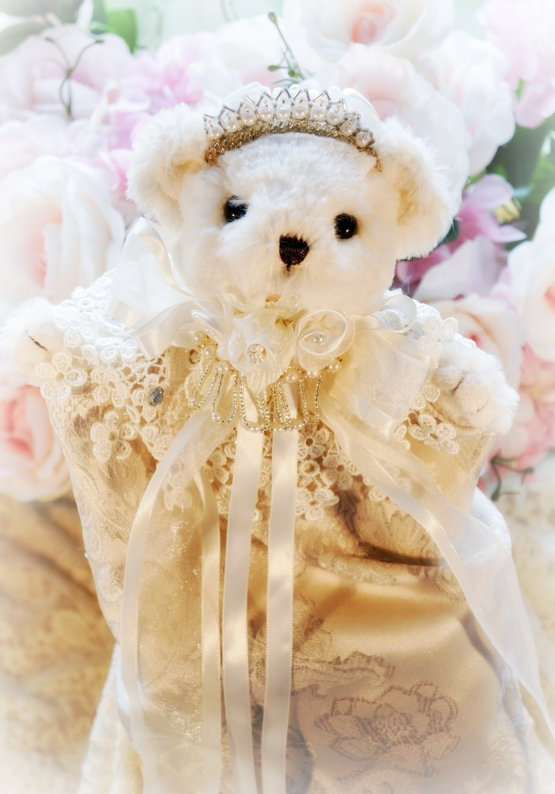 Image 1 of Ivory and Silver Damask Bear