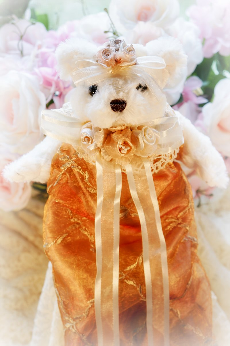 Image 1 of Embroidered Silk Organza Bear