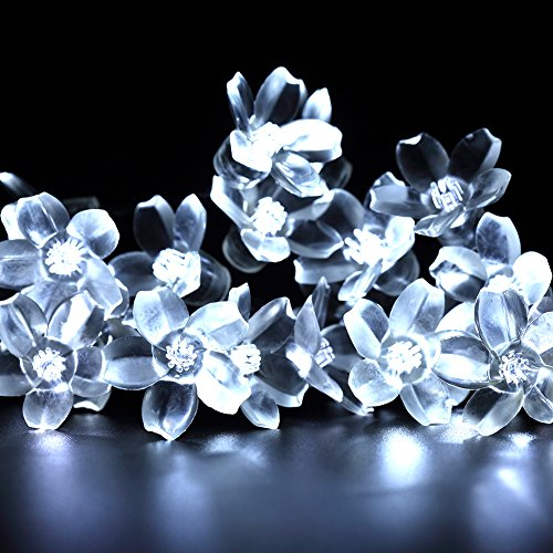 Image 0 of LED White FLower Lights