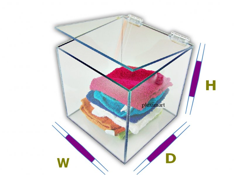 Plexiglass box with hinged lid - 15D x 15 W x 15 H - 1/4 Thick