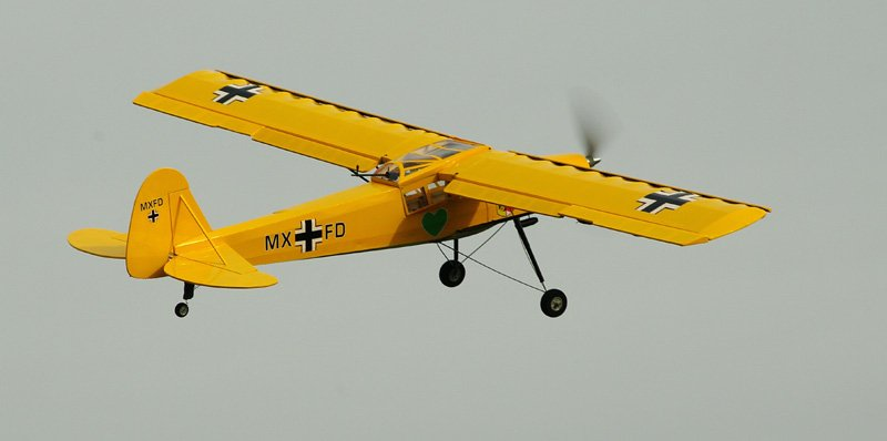 Image 2 of Fieseler Fi-156C Storch EP 63