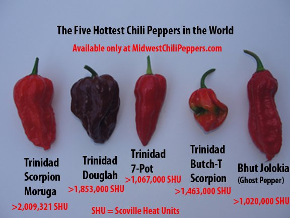 Six Hottest Chili Peppers In The World