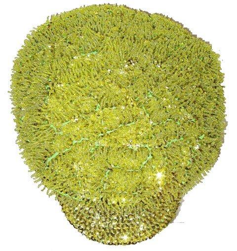 Image 0 of Sequin Brando Cap Lime Green (HAT-23)