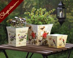 Botanical Butterflies Birds and Blooms Garden Planter Set