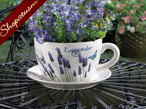 Lavender Fields Teacup Plate Charming Planter for Plants